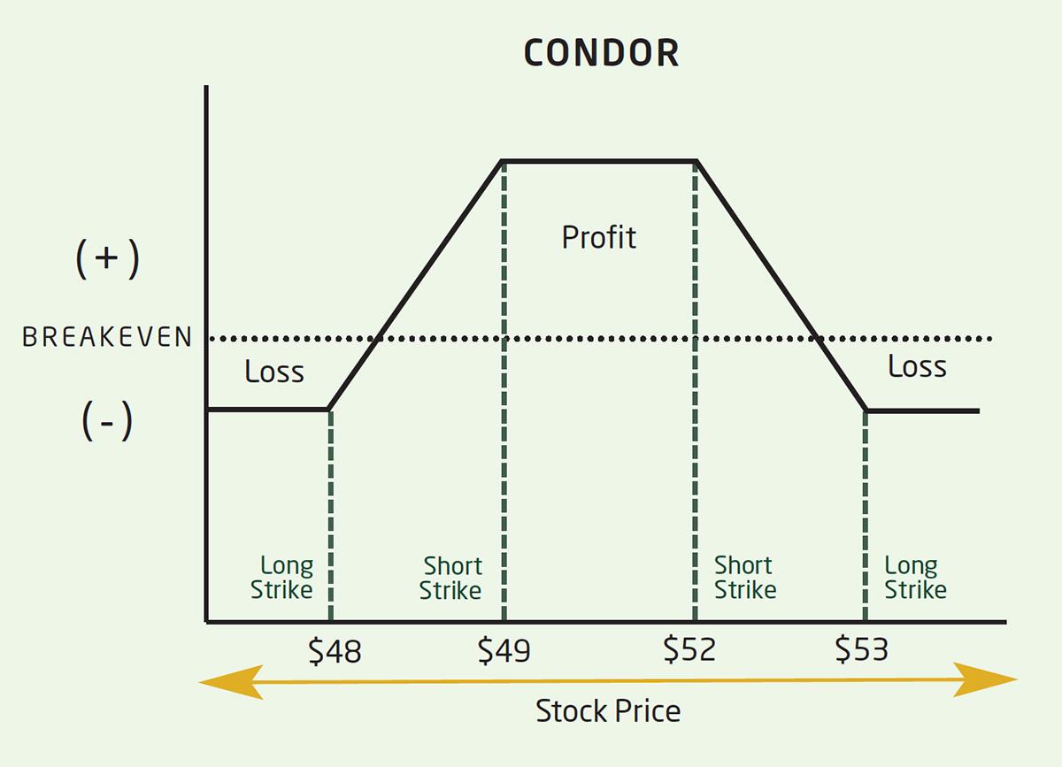 p/l curve iron condor option spread